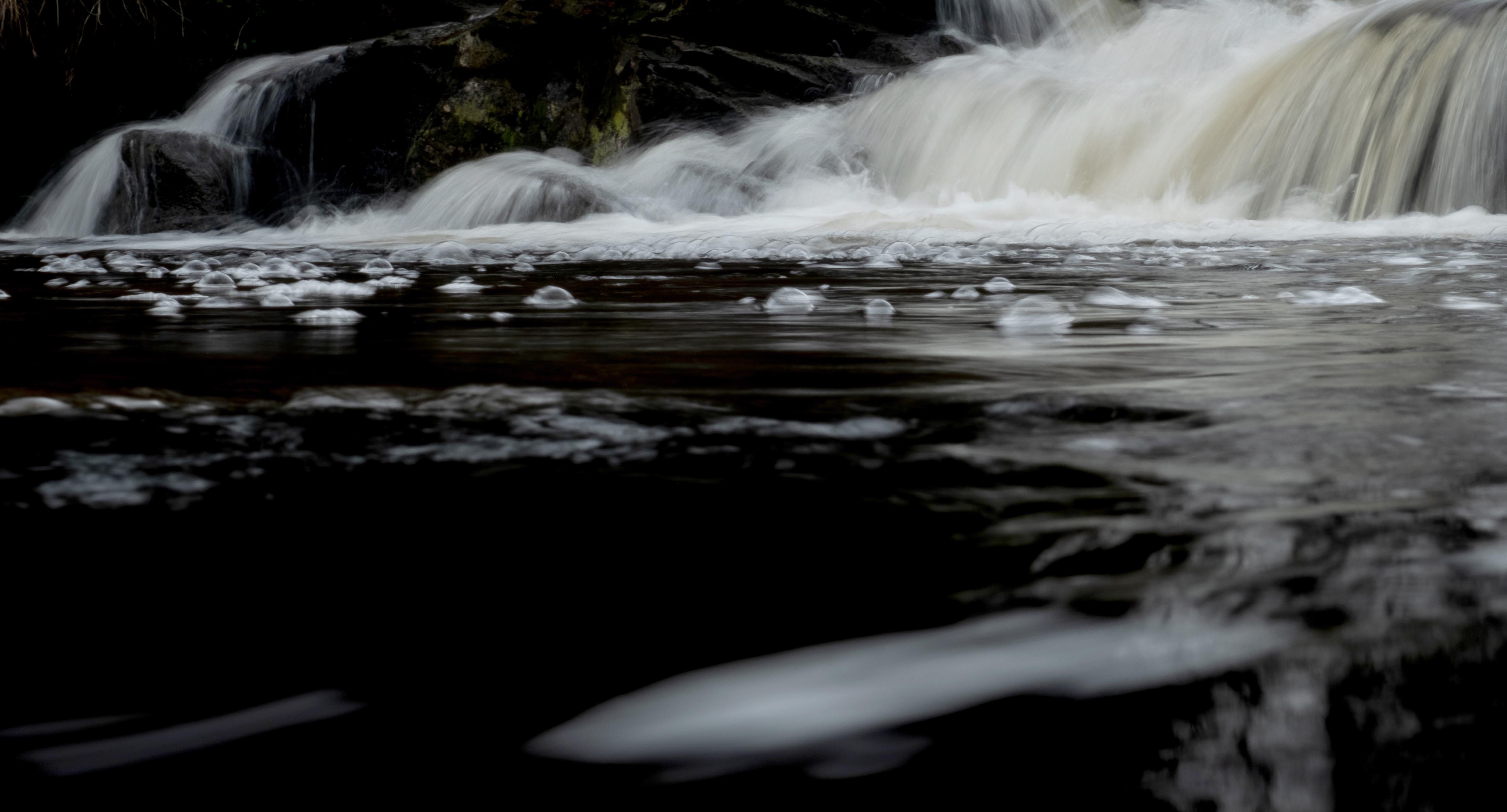 Water Sprites 8